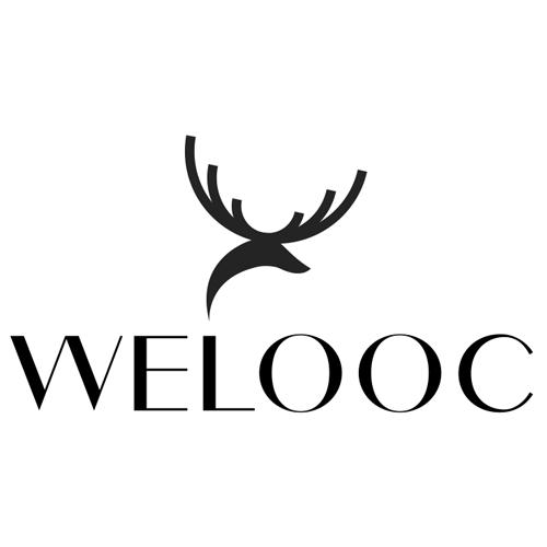 Welooc.com coupons